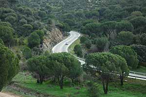 Imagen de la polémica 'carretera de los pantanos'. (Foto: Marga Estebaranz)
