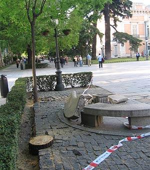 Imagen del tocón dejado en la zona por técnicos municipales y el banco de piedra roto. (R. Bécares)