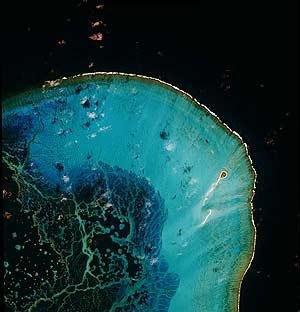 Imagen, tomada por el satélite GeoEye, del santuario marino de Hawaii. (Foto: AP)