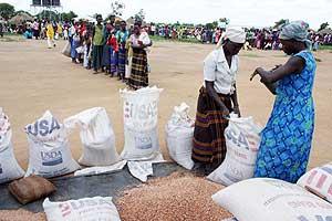 Un grupo recoge la ayuda humanitaria en un campo de desplazados en Uganda. (Foto: AP)