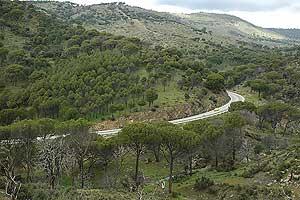 Vista panorámica de la carretera de los Pantanos. (Foto: EL MUNDO)