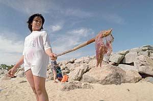 Una joven retira una medusa de una playa de Cataluña. (Foto: EL MUNDO)