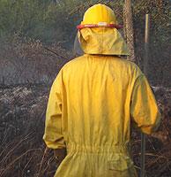 Un miembro de una cuadrilla de extinción se afana en su lucha contra el fuego. (Foto: M.J. Llerena)
