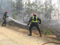 Dos de los bomberos de Madrid tratando de apagar un incendio. (Foto: M.J.Llerena) VEA EL VÍDEO.