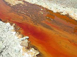 Río Tinto, en huelva, es uno de los lugares de la Tierra más parecidos a Marte. (Foto: PNAS)