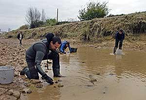 Técnicos de Medio Ambiente buscan almejas en el río Ebro. (Foto: EFE)