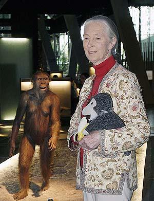 Jane Goodall, junto a su inseparable mono de peluche. (Foto: Reuters)