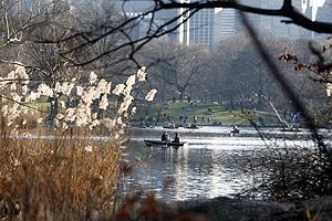 Un día 'primaveral' durante el invierno en Central Park (Nueva York). (Foto: REUTERS)
