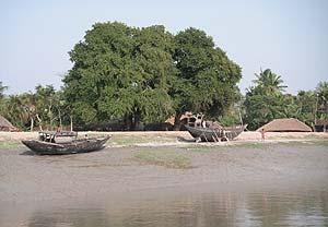 Imagen del río Ganges, en la que se aprecia cómo el caudal ha descendido varios metros respecto a su nivel habitual. (Foto: Marta Arroyo)