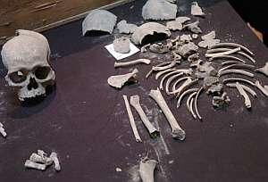 Restos del esqueleto de un muchacho de entre 5 y 8 años hallado en Tula. (Foto: EFE)