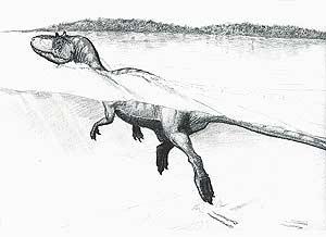 Reconstrucción del dinosaurio. (Foto: AFP)