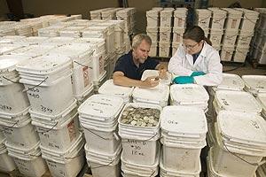 Dos miembros de la empresa estadounidense supervisan las monedas encontradas. (Foto: AP)