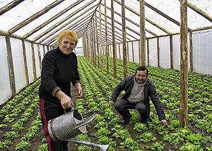 Gherghina e Ille, dos ciudadanos rumanos que trabajaron en los invernaderos de Almería. (Foto: Juan Carlos de la Cal)