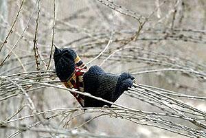 Una prenda de ropa cuelga de la valla tras un asalto masivo en 2005. (Foto: AFP)