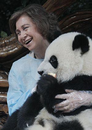 La Reina coge en sus brazos a una cría de panda en el Centro de donde provienen Bing y Hua.