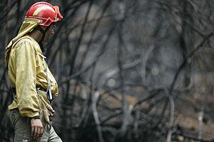 Trabajadores de la Brigada Forestal trabajan en la extinción. (Foto: EFE)
