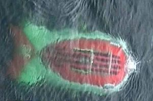 Imagen de la televisión rusa en el momento en el que el batiscafo sale a la superficie del mar (NTV/EFE)