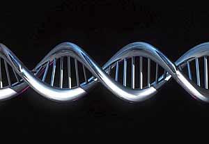 Estructura helicoidal del ADN (EL MUNDO)