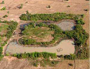 Ímagen aérea del lugar antiguamente ocupado por un 'templo urbano' (PNAS)