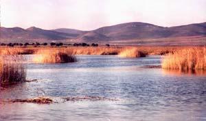 Foto de archivo de las Tablas de Daimiel en 1997, tras unas intensas lluvias (EFE)