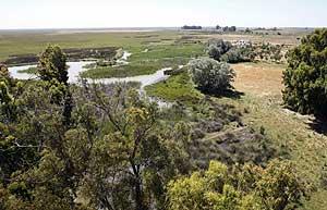 Imagen de archivo del Parque de Doñana (EFE)