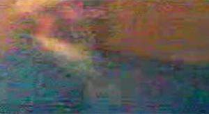 Fotograma del vídeo, que se ve borroso, pero en el que se escuchan las burlas a Román, un discapacitado de 46 años.