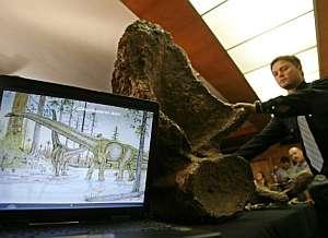 Presentación de una réplica del fósil del dinosaurio gigante y la reconstrucción artística de su apariencia. (Foto: EFE)