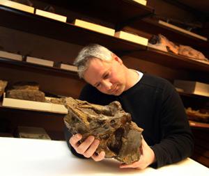 El estudiante Mike Taylor examina la vértebra del saurópodo (FOTO: Universidad de Portsmouth)