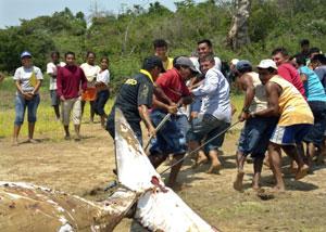 Los lugareños tratan de rescatar el cadáver del cetáceo. (Foto: REUTERS)