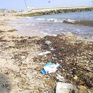 Vista de la playa de Can Pere Antoni repleta de basura. (Foto: Jordi Avellà).