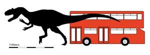 Comparación entre el tamaño del dinosaurio y un autobús. (Foto: 'Journal of Vertebrate Paleontology')