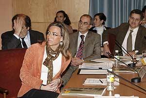 La ministra de Vivienda durante la presentación de la puesta a punto del sistema informático de gestión de las ayudas. (FOTO: EFE)