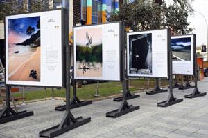 Montaje de la exposición en Alicante (Foto: José B. Ruiz)