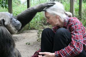 (Foto: Instituto Jane Goodall)