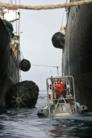 Activistas de Greenpeace se interponen con una lancha inchable entre los barcos japonés y panameño (Foto: AFP)