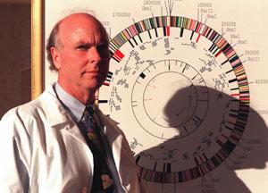 Craig Venter, ante un mapa genético. (Foto: AP)