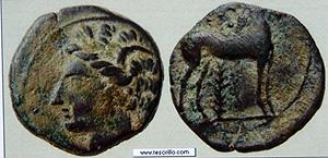Monedas encontradas en la excavación de la calle Ruaya. (Foto: E.M.).