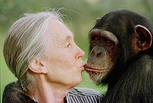 La primatóloga Jane Goodall besa a Tess, un chimpancé de seis años de una reserva de Kenia. (Foto: AP)