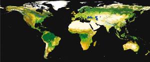 Mapa de la Tierra realizado desde el satélite Envisat. (Foto: ESA)