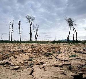 Las reservas de agua en Cataluña son mínimas. (EFE)