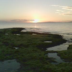Aspecto de la playa de Es Trenc. (Foto: Pedro Lasa)