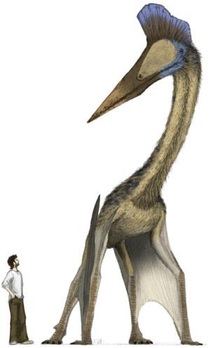 Recreación de un pterosaurio comparado con un hombre. (Foto: EFE)