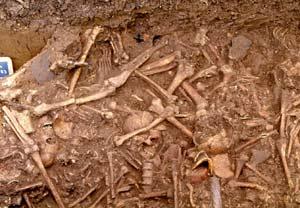 Enterramiento de huesos del Neolítico. (Foto: 'Antiquity')