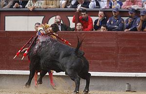 José Tomás entra a matar. (Foto: Antonio Heredia)