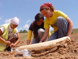 Un grupo de arqueólogas analizan uno de los grandes colmillos encontrados.