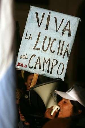 Manifestaciones en apoyo de los agricultores frente a la Quinta Presidencial de Olivos. (Foto: EFE)