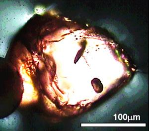 Fragmento del diamante en el que se han encontrado los restos de carbono. (Foto: Nature)