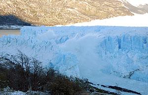 El Perito Moreno en el momento de la ruptura de su arco el pasado 9 de julio. (Foto: EFE)