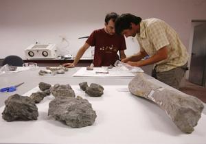 Laboratorio de estudio de los fósiles, en un polígono de Cuenca. (Foto: Antonio Heredia)