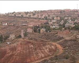 Una parcela palestina confiscada por Israel. (Foto: S. E.)